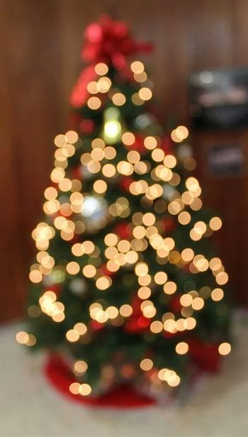 Christmas Tree Lights Beautiful