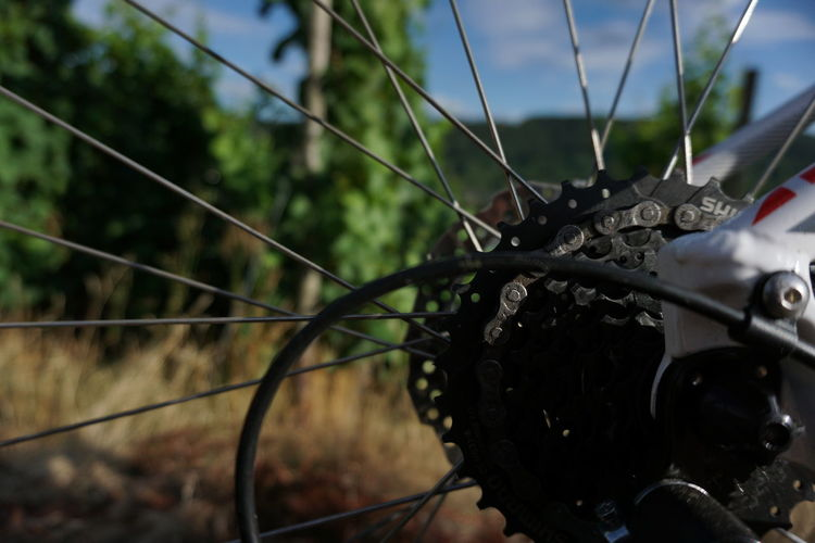 Bike Ride Bicycle Bike Bikelife Biker Bikes Cubebike Cubebikes Day Metal Mode Of Transportation Nature No People Outdoors Selective Focus Transportation Travel Wheel