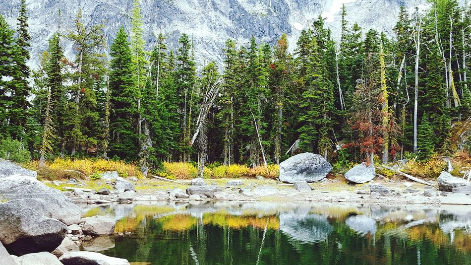 Trees Fall Colors Water Reflections EyeEm Nature Lover Lake Mountains Hiking Nature_collection End Of Summer Fall Beauty Outdoor Photography Reflection The Great Outdoors Lakeside Peaceful Calm