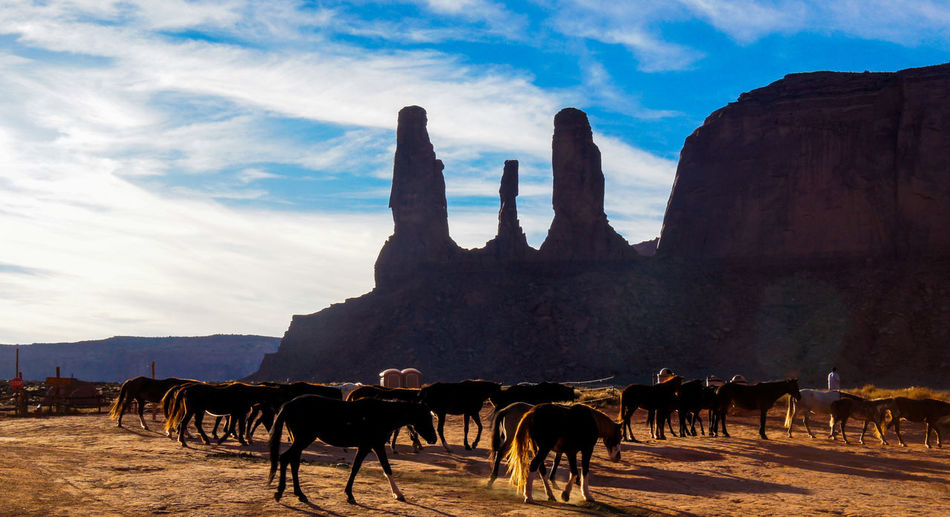 📸: Daniel Nery -- 🌎: Monument Valley / 🇺🇸 -- 🗓: 2013 -- Travel Destinations Outdoors Horses Day Animal Themes Nature Mountain No PeopleTourism USAtrip Roadtrip Travel Trip Trip Photo Nature Landscape Monument Valley Lost In The Landscape EyeEmNewHere First Eyeem Photo Golden Hour EyeEm Selects