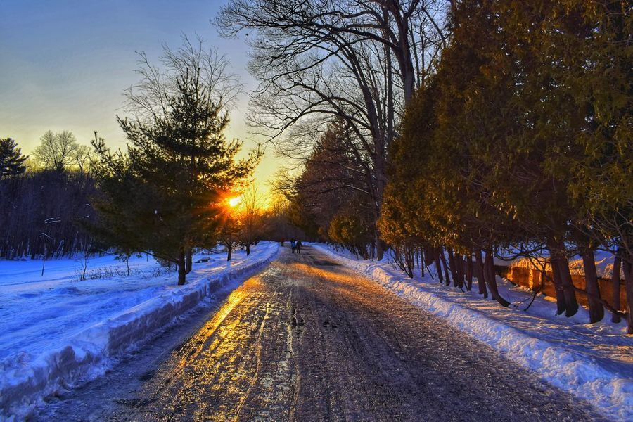Cold Temperature Snow Winter The Way Forward Beauty In Nature Sunset Road The Great Outdoors - 2017 EyeEm Awards Tranquility Scenics The Street Photographer - 2017 EyeEm Awards