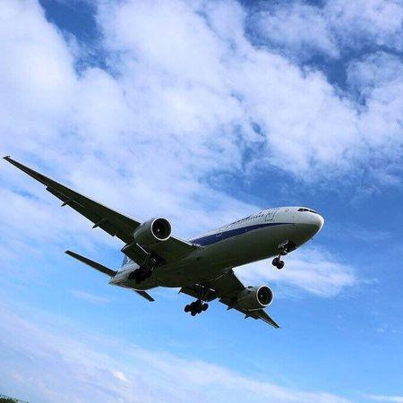 おはようございます🎵まだ今日も伊丹Photoですいません(笑)飛行機大好き✨💛今日も素敵な1日を(*^_^*) Airport Plain 飛行機 伊丹空港 千里川 同じ空の下 で 一緒に楽しみたい