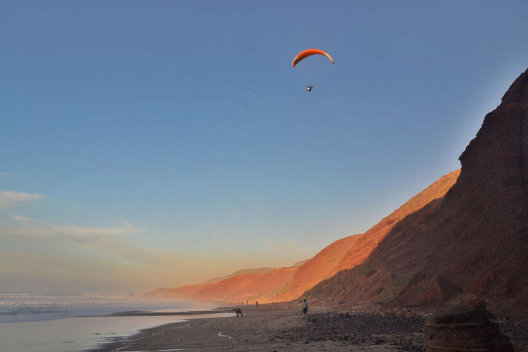 The paraglider