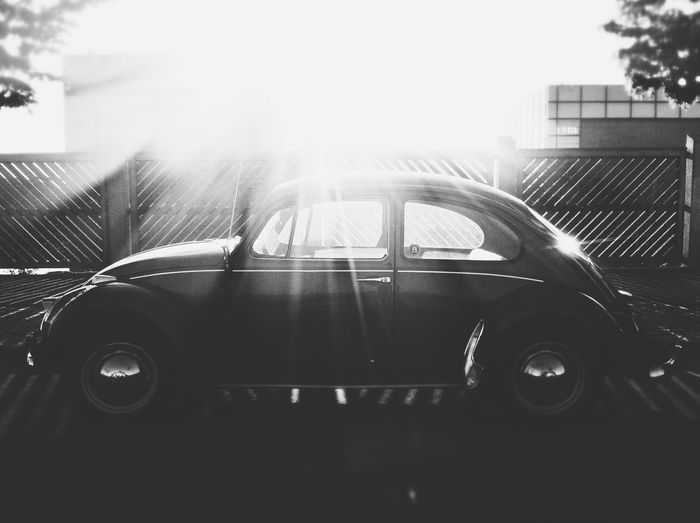 Architecture B&w Beetle Building Exterior Built Structure Car Classic Car Day Flare Lens Flare No People Outdoors Parked Parking Sculpture Side View Stationary Street Sunlight Transportation Travel Tree VW VW Beetle Window