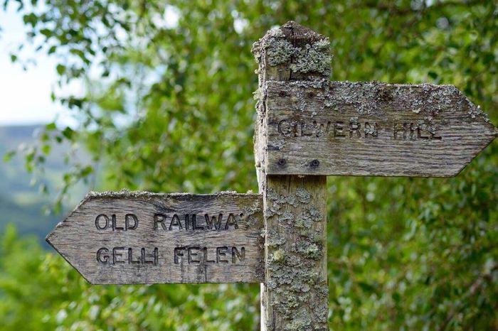Signage in Clydach. Sign Wooden Sign Lichen Clydach Gorge Clydach Gilwern Old Railway Line My Village Hidden Gems  My Village.