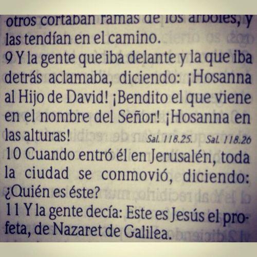 """""""La entrada triunfal de Jerusalén"""" Hosanna Hijo De David"""