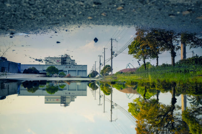 Architecture Beauty In Nature Building Exterior Built Structure City Day Lake Nature No People Outdoors Puddle Reflection Sky Tree Water Waterfront Wet 反射 水鏡