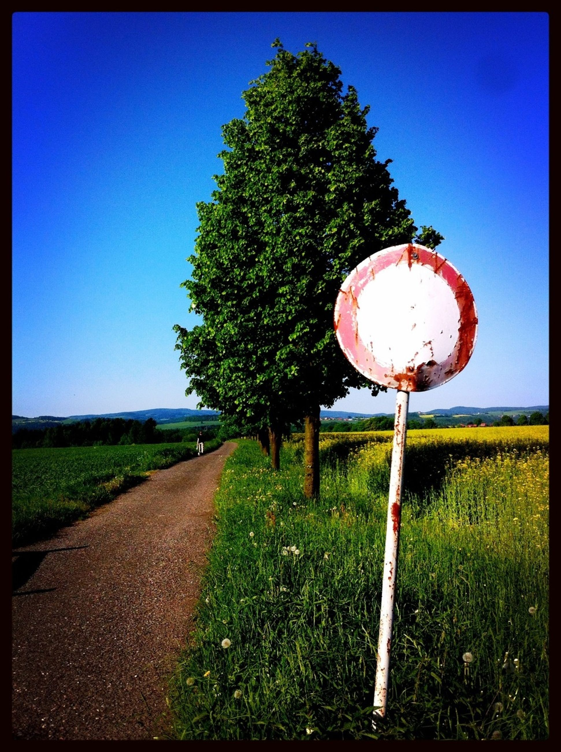 grass, tree, field, landscape, clear sky, road sign, transfer print, tranquility, auto post production filter, road, the way forward, communication, guidance, sign, tranquil scene, blue, rural scene, sky, grassy, nature