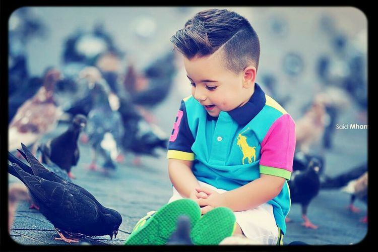 Playing With The Animals so cute. The boy and birds..