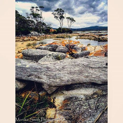 Bay Of Fires. Binalong Bay Tasmania. Bayoffires Travel Tasmania Binalongbay Australia Water Beach Sony Sonyhx50 HX50 Clouds Sky Waves Monikasmithphotography