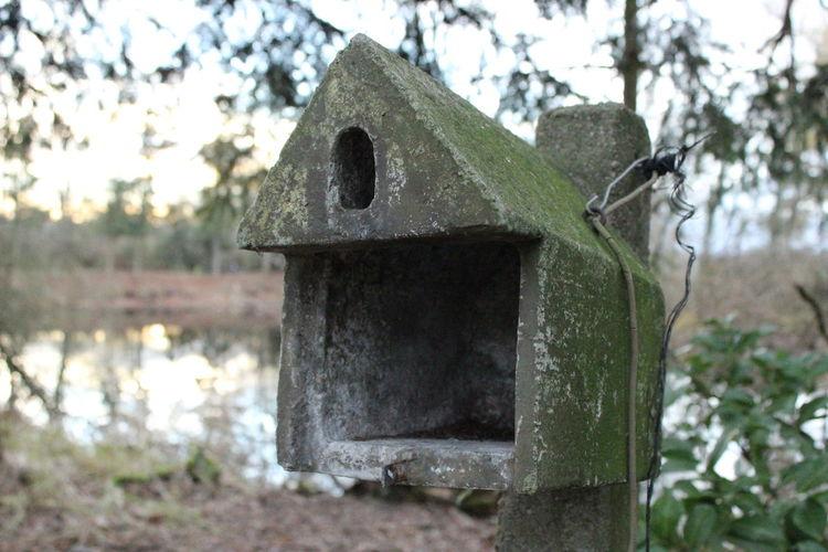 Autumn Autumn Colors Bird Box Birdbox Close-up Dilapidated Focus On Foreground Lake No People Nofilter Non-urban Scene Old