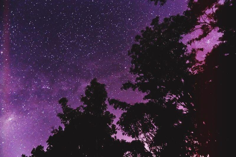 🌌 Star Starry Sky Starry Night Stars Landscape Night Nightphotography Night Photography Night Sky Woods Long Exposure Light Leak Dreaming Dream