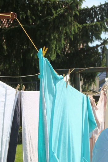 Blue Casual Clothing Clothesline Day Fabric Focus On Foreground Green Color Growth Leisure Activity Lifestyles Multi Colored Nature Outdoors Sky Textile Tree