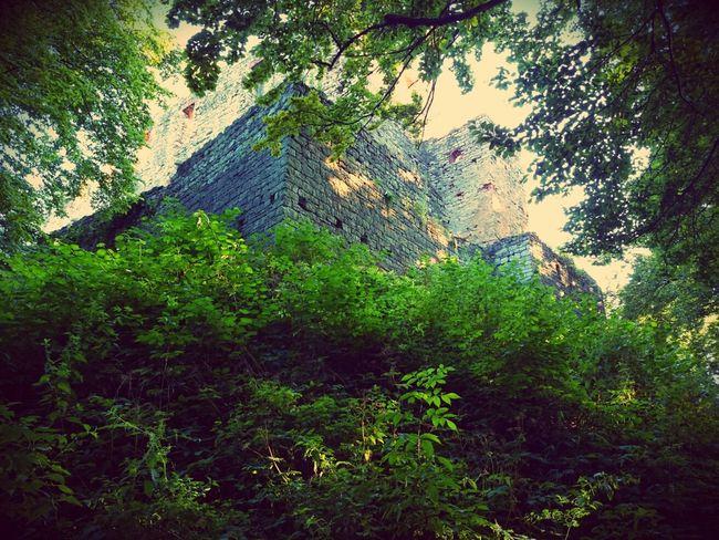 Castle Landscape_Collection Taking Photos Eye Em Nature Lover