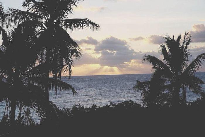 Sunset Christmasisland Ocean