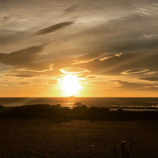 Winter sun ☀️ Atlantic Ocean Beach Portugal Porto Sunset Sun Silhouette Sky Beach Nature Shades Of Winter