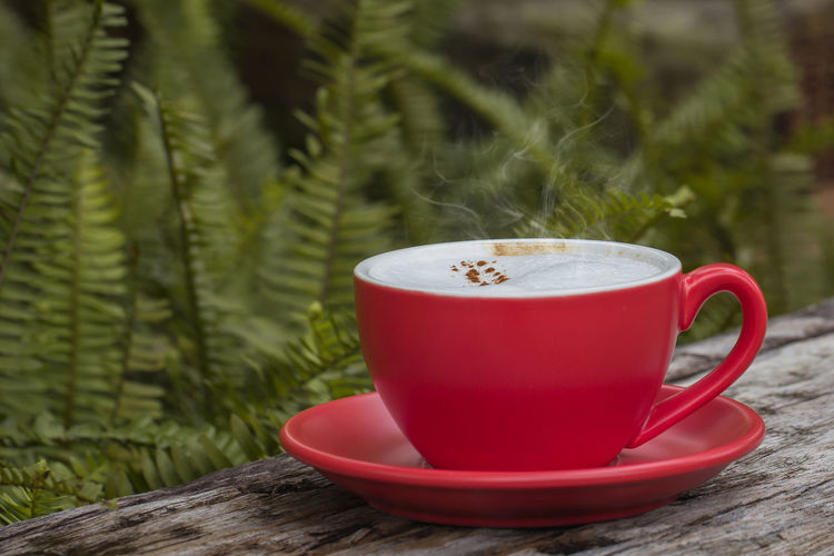 Smoke Close-up Coffee Coffee - Drink Coffee Cup Crockery Cup Drink Focus On Foreground Food And Drink Freshness Green Color Hot Drink Mug Nature No People Plant Red Refreshment Saucer Table Tea Cup