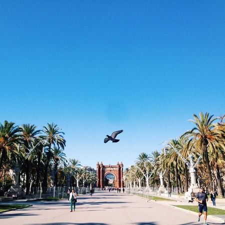 Golden moments Barcelona SPAIN Travel VSCO Vscocam Vscotravel Myawaycontest Natgeotravel Matadornetwork
