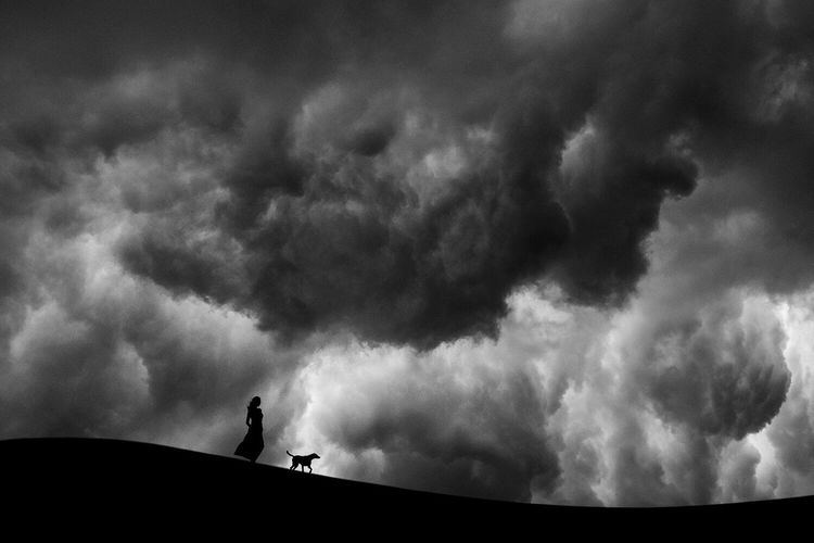 Silhouette Woman With Dog Standing On Field Against Cloudy Sky At Dusk