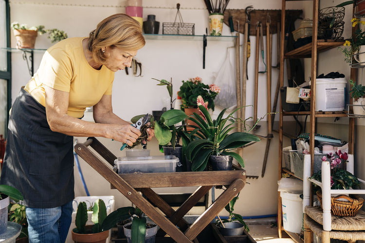 Woman holding potted plant on table