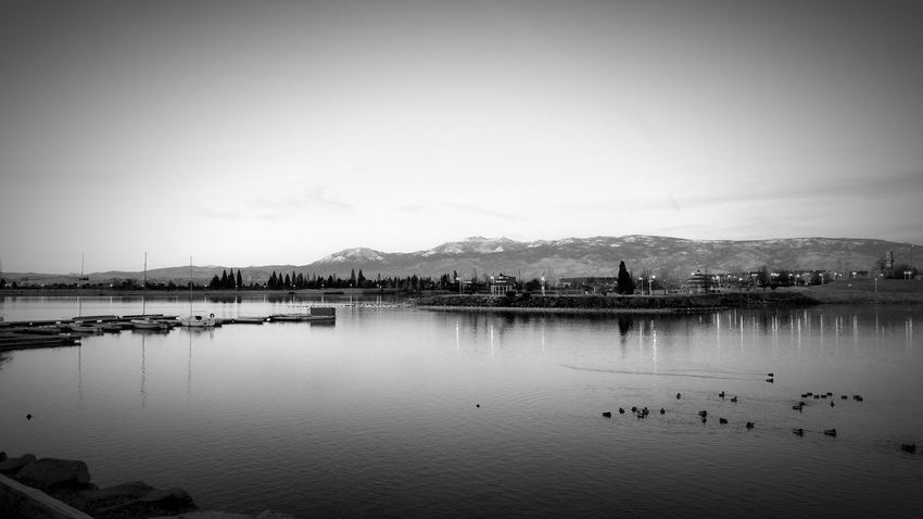 Reflection Water Lake Nature Sky Tranquility No People Travel Destinations Outdoors Reflection Lake Beauty In Nature Day Reno, NV Sparks, Nevada Sparks Marina Black And White City Waterfoul Serene Peaceful View Quiet Moments Urban Beauty NEVADA, USA!♡ Black And White Photography Sunrise - Dawn Quiet Morning