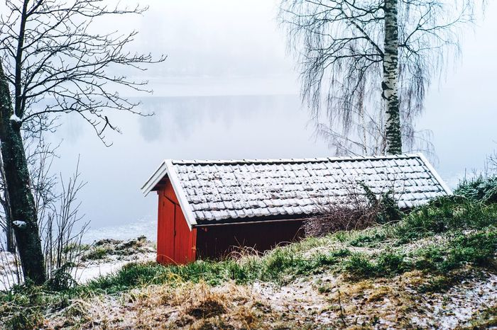 Showcase: January House Cabin Lake Lake View Winter Norway Mystic Fog Trees Outdoors The Great Outdoors With Adobe