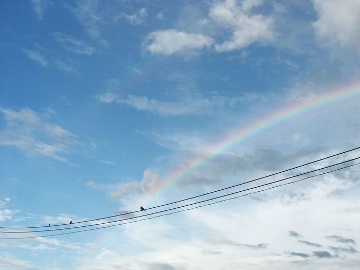 Low Angle View Sky Cloud - Sky Cable No People Day Contrail Nature Outdoors Vapor Trail Multi Colored Scenics Beauty In Nature Technology Birds The Week On EyeEm EyeEmNewHere