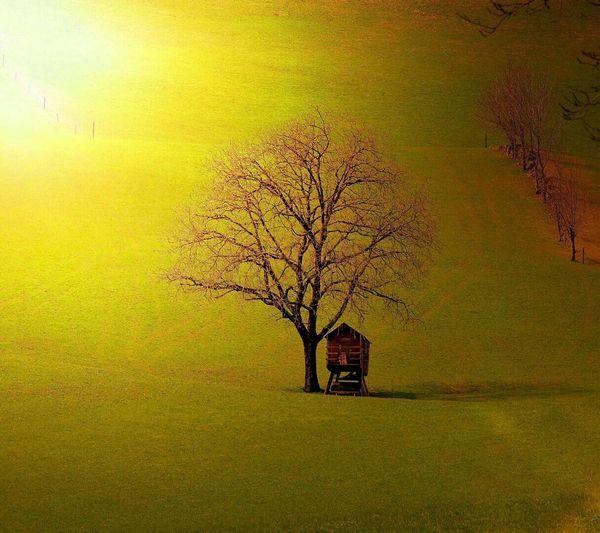 Un paisaje calido First Eyeem Photo
