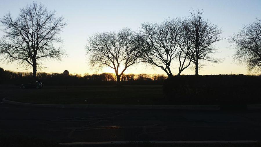 Winter sunsets Sunset Silouhette