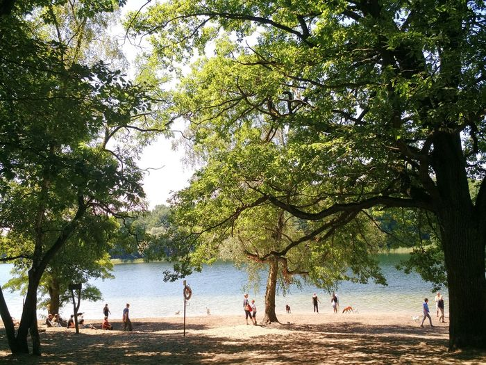 Beauty In Nature Day Enjoyment Fun Green Color Growth Idyllic Large Group Of People Leisure Activity Lifestyles Mixed Age Range Nature Outdoors Scenics Sky Tourism Tourist Tranquil Scene Tranquility Travel Destinations Tree Vacations Water People Together Discover Berlin