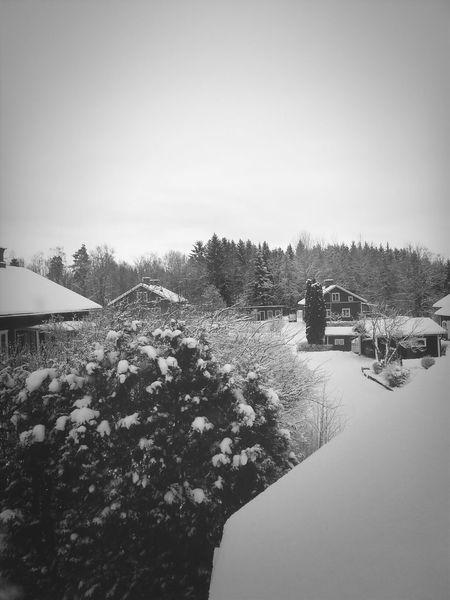 Good Morning! Winterwonderland Black & White