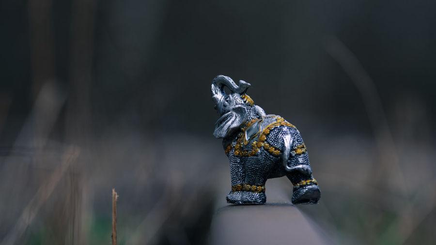 Close-up of elephant figurine on field