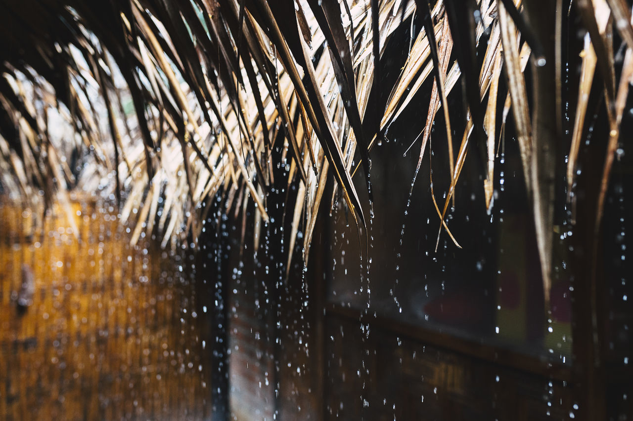 Close-Up Of Water Dripping From Roof During Rainy Season