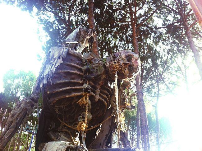Skull Skull Face Skulls And Bones Giant Parque De Atracciones Halloween Halloween Horrors Halloween_Collection Halloween EyeEm