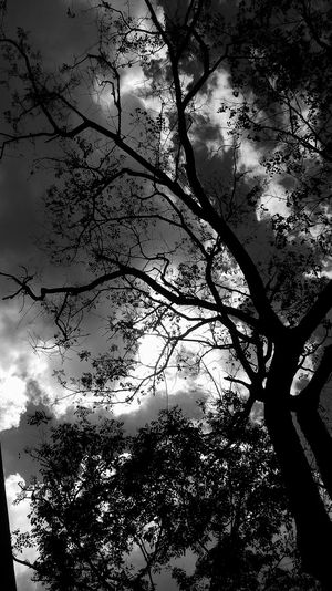 Shade Little Grey on this Sky No People Cloud - Sky Silhouette Beauty In Nature Blackandwhite Photography Shadeofgrey