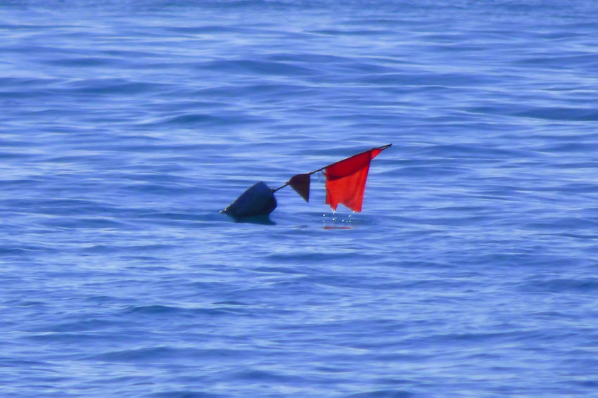 Fishing Buoy Day Flag Nature No People Outdoors Red Water Waterfront