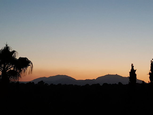Silhouette Sunset Travel Destinations Mountain Sky Tree Statue Tranquility Outdoors Vacations Beauty In Nature Landscape Scenics Clear Sky Nature
