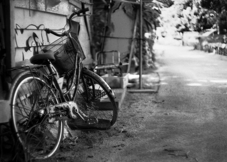 An abandoned rusty bike on a dirt road in Okinawa, Japan. Japan Abandoned Architecture Bicycle Bike Bikes Black And White Friday Building Exterior City Compositon Day Dirt Road Land Vehicle Mode Of Transport No People Old Outdoors Road Rusty Stationary Street Transportation