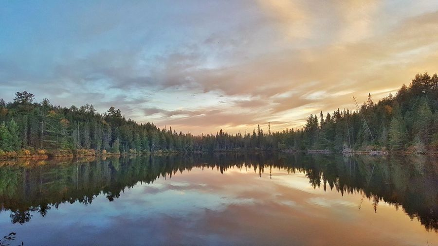 Ontario Canada Boothrock Algonquin Provincial Park Algonquin Park Reflection Sky Cloud - Sky Water Beauty In Nature Tranquil Scene Tranquility Lake Scenics Outdoors Symmetry Waterfront Idyllic Nature Tree
