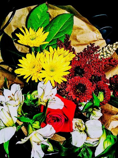 little things that make you say hummm Suprise♡ Soon Married Sign Of Love I LOVE HIM♥ Flowering Plant Flowers Love ♥ Couple Goals Flower Head Pollen In Bloom Blooming Plant Life Petal Passion Flower Fragility Single Flower Bunch Of Flowers Flower Arrangement