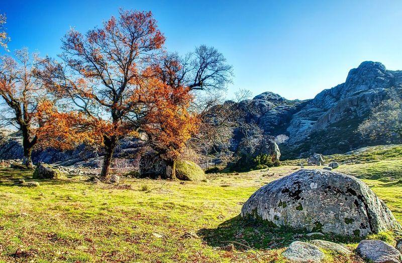 Serra do Gerês Geres PNPG Serra Serradogerês Beautiful Nature