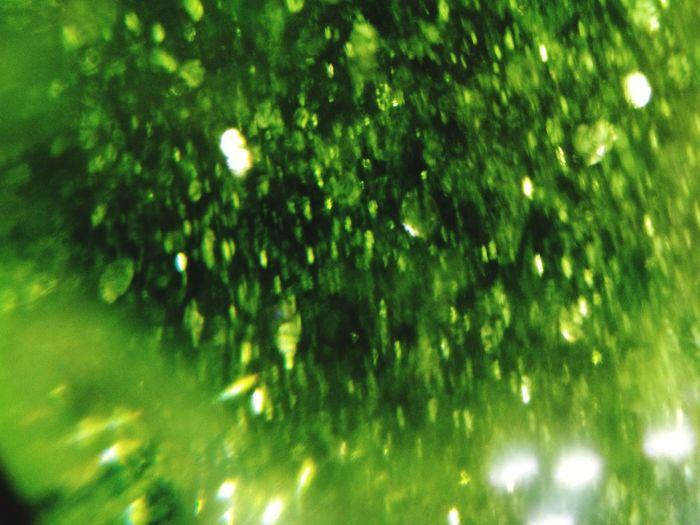 green Tree Defocused Illuminated Snowflake Backgrounds Luminosity Christmas Full Frame Celebration Shiny