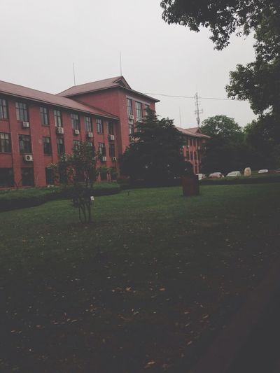 No1 building Studying