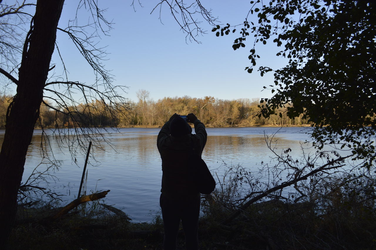 tree, lake, water, nature, silhouette, real people, rear view, lakeshore, outdoors, beauty in nature, reflection, bare tree, clear sky, one person, tranquility, tranquil scene, sky, day, forest, branch, scenics, standing, animal themes, landscape, full length, mammal, people