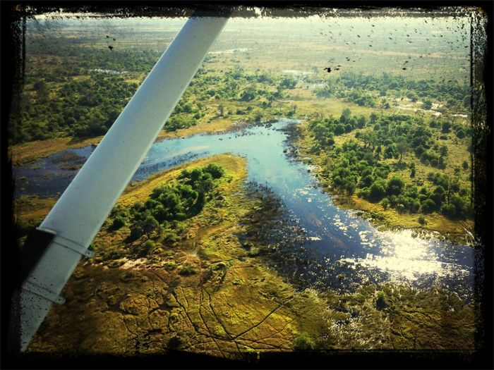 Scenic Fly Great Views Okavango Delta Nambw2014