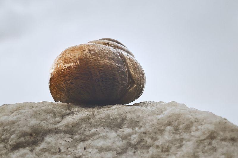 As a stone