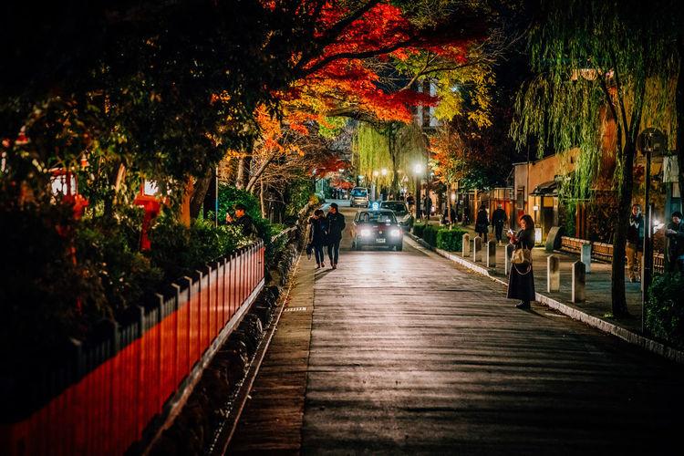 Autumn Japan Japanese Culture Nightphotography Texi Car Kyoto Maple Street