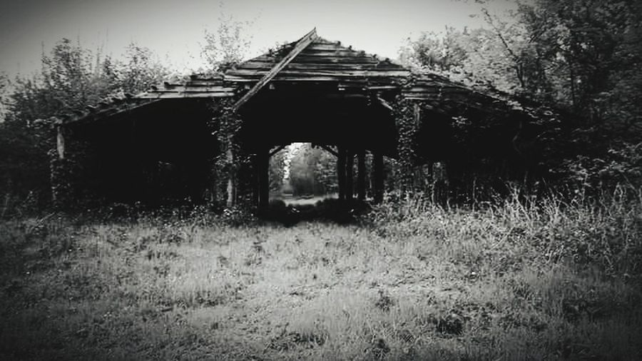 Abandoned Old Old Ruin Architecture Built Structure Spooky History Damaged Obsolete Weathered Run-down Ancient Arch Grass Building Exterior No People Day Rotting Outdoors