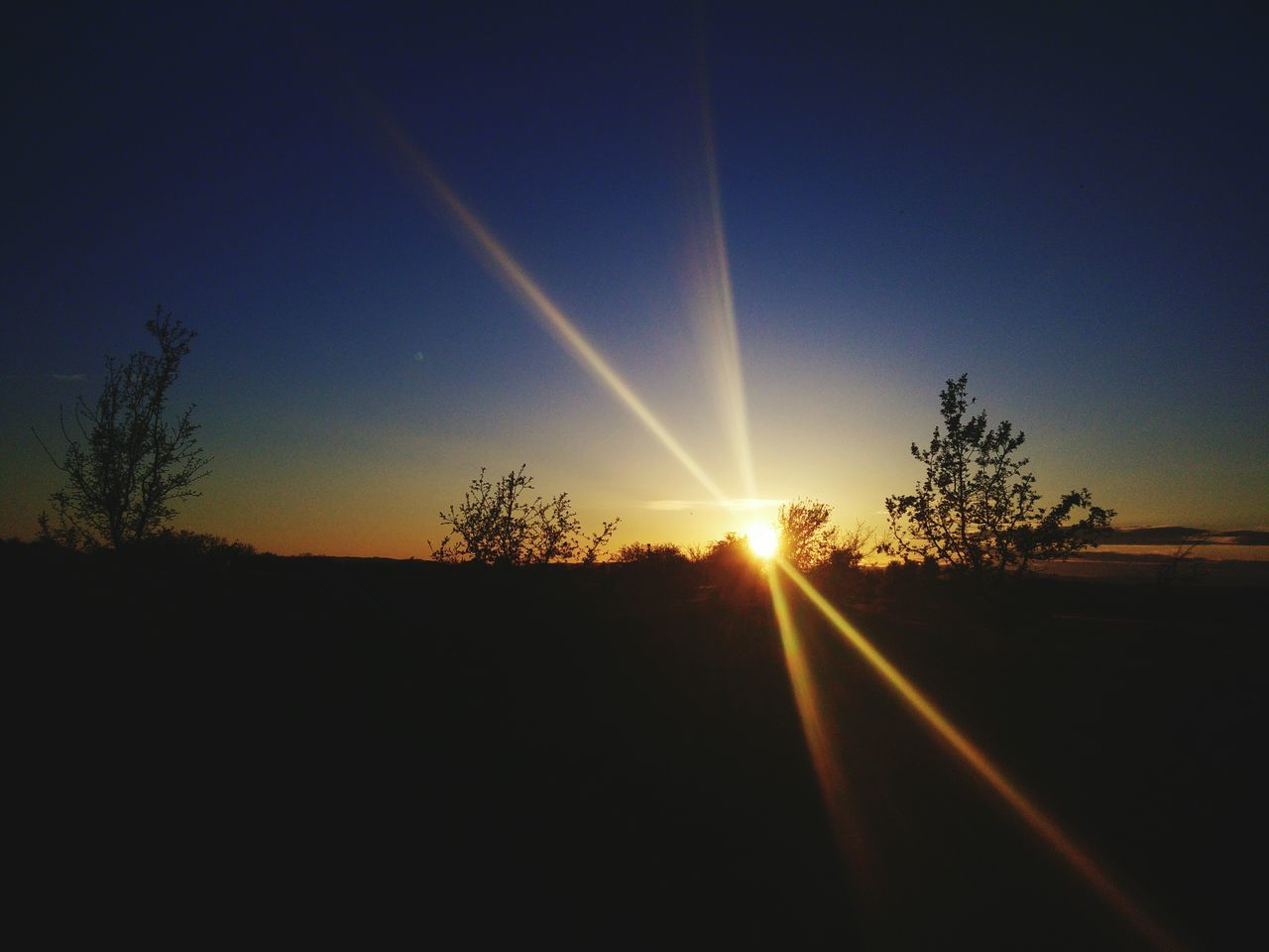 sun, sunbeam, lens flare, sunset, silhouette, nature, tree, sunlight, no people, beauty in nature, tranquility, tranquil scene, scenics, sky, landscape, outdoors, vapor trail, day