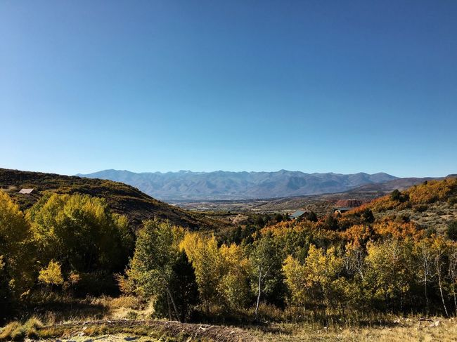 the fall colors have found us here. Fall Colors Heber City Wasatch County Utah